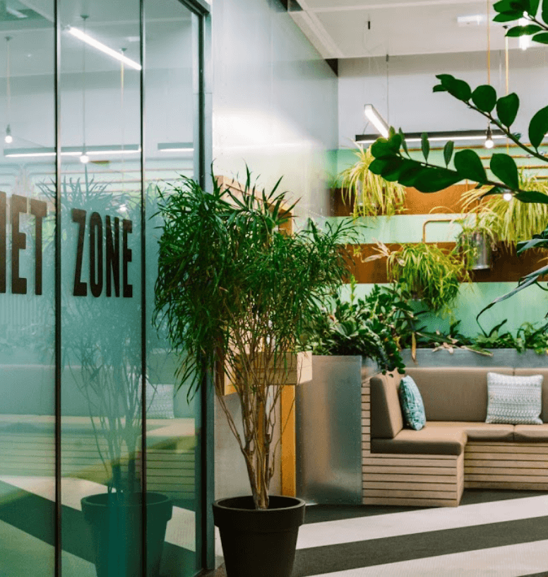 A photo of the office space which is filled with plants